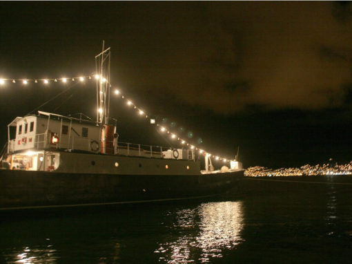 La Yavari, al fondo, Puno de noche